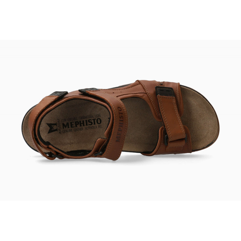 Chaussures Marron Joulia Chaussures Raoul SARL MEPHISTO 85TwRq